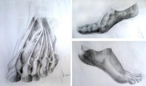 Rysunek anatomiczny stopy