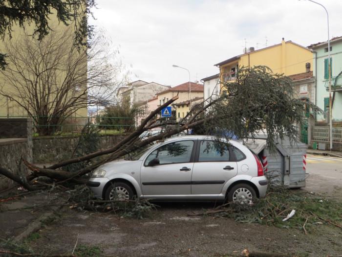 drzewo_na_samochodzie_wichura_pistoia_moja_Toskania